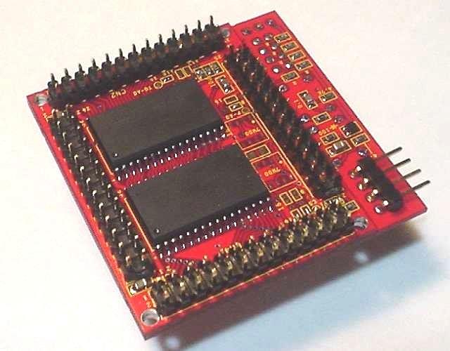 SOP-RAMを重ねた横顔